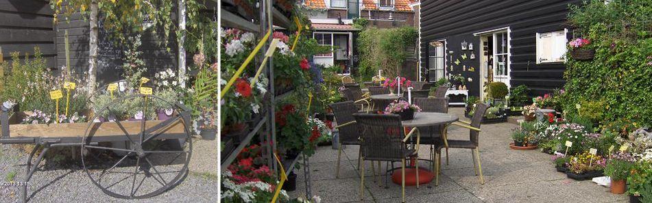 Fleuria | winkel en theeschenkerij in de zak van Zuid-Beveland